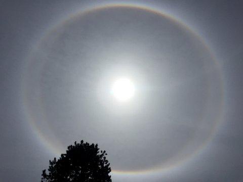 Ganzer Kreis um Sonne, Praktische und kostenlose Ressourcen zum Englischlernen